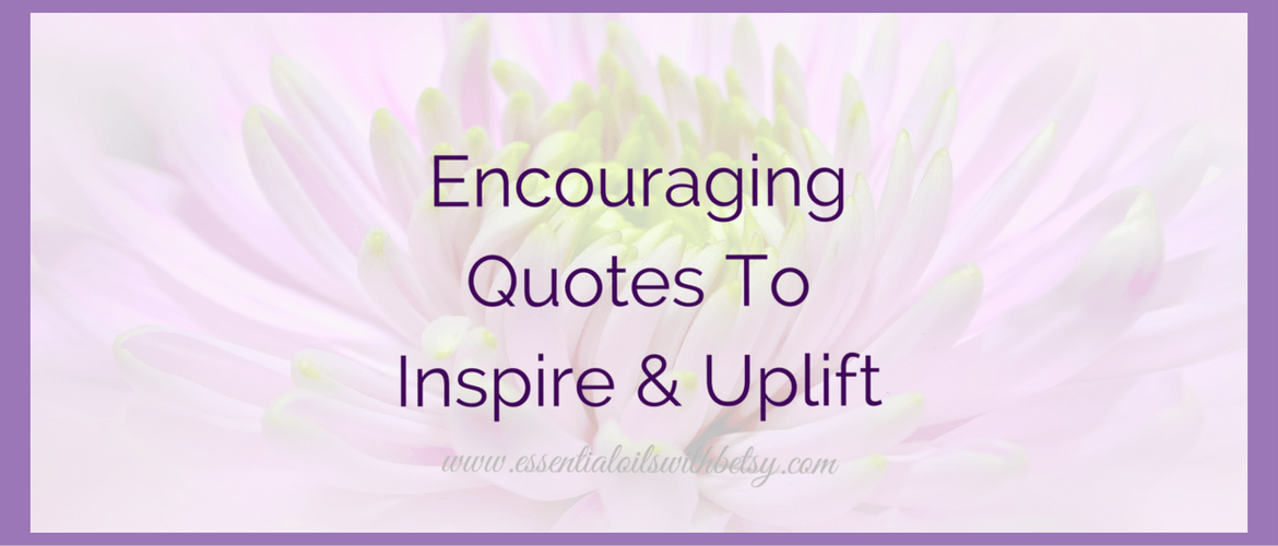 Encouraging quotes are a wonderful way to uplift ourselves naturally. Our minds are amazing because we can train them to think about life in certain ways, whether positive or negative. If we are constantly thinking negative thoughts, unfortunately, this becomes a habit for our brain. But don't despair, because new habits can be formed. Habits that get our brains trained into a positive loop instead of a negative loop. We truly are what we think we are! As we are looking forward to the New Year, we can start re-training our brains in 2017 to think more positively. Reading through motivational and encouraging quotes is one way I personally work on training my brain to think positively.