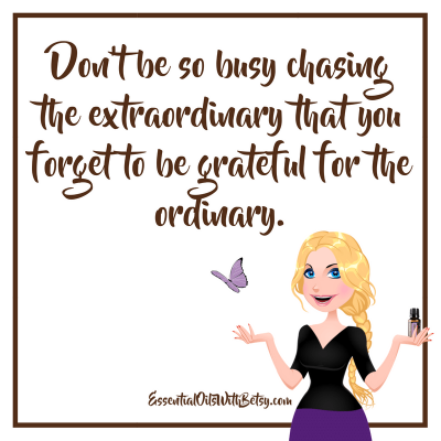 Don't be so busy chasing the extraordinary that you forget to be grateful for the ordinary.
