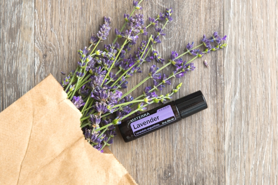 How To Use Lavender Oil 11 Different Ways