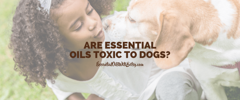 are essential oils toxic to dogs using oils with dogs
