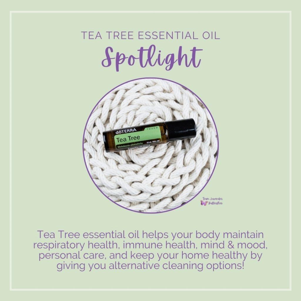 doTERRA Tea Tree Essential Oil Spotlight